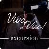 """Пеший тур""""Viva El Vino"""""""